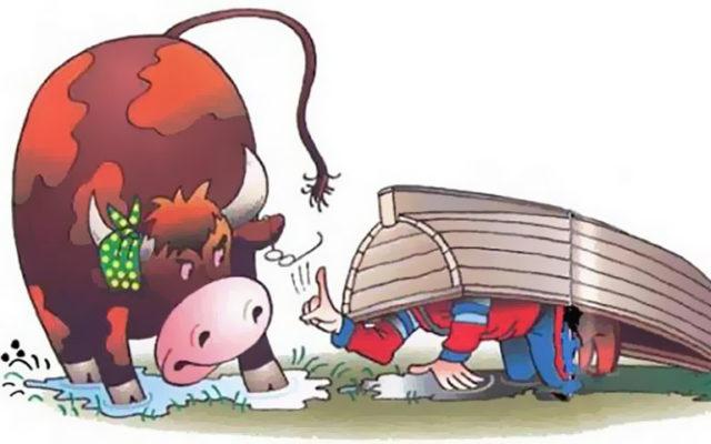 Целебный бык